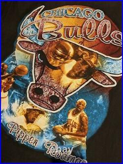 RARE VINTAGE 1997 CHICAGO BULLS LAST DANCE 90s rap tee shirt Jordan Rodman sz L
